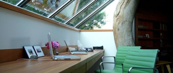 office-natural-light-600x255